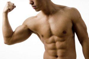 sport augmente la masse musculaire